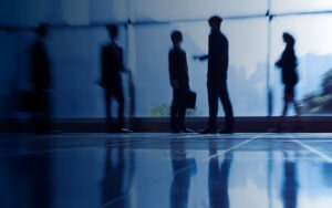 AN OVERVIEW OF CORPORATE CRIMINAL LIABILITY